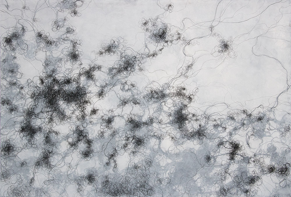 "Language of Nature, 48"" x 72"" mixed media and charcoal on mounted paper"