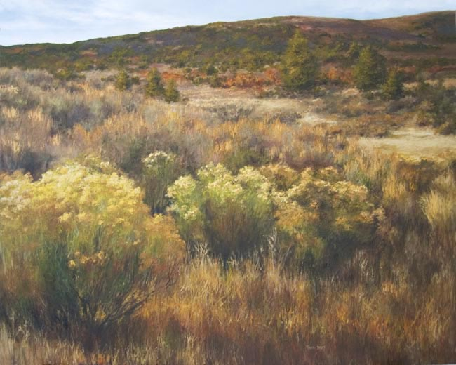 Rabbit Brush, 2005