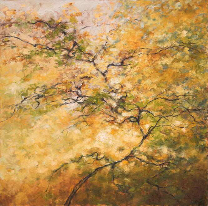 """Tree, 48"""" x 48"""", oil"""